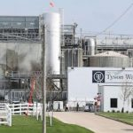 Tyson suspends plant managers amid virus betting claim