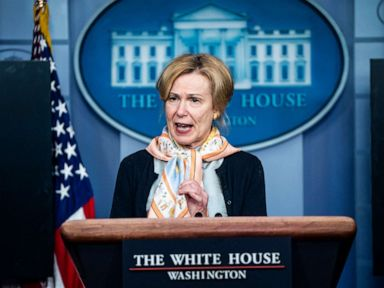 birx-on-trumps-disinfectant-injection-moment-i-still-think-about-it-every-day.jpg